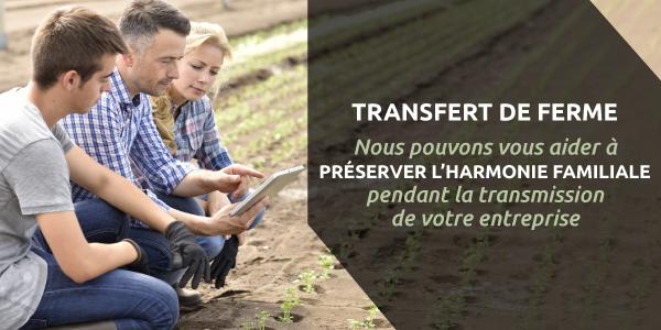 Expert en transfert d'entreprise familiale au Québec